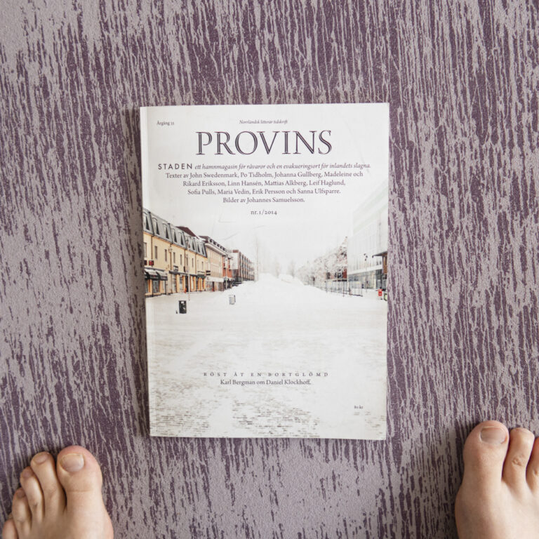 Provins – Norrländska städer